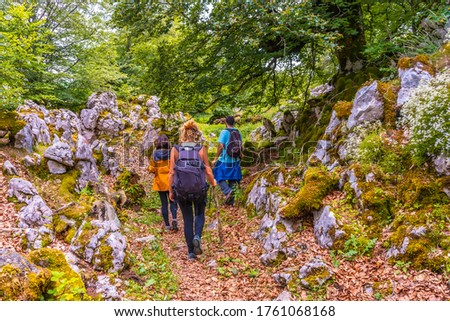Mount Aizkorri 1523 meters, the highest in Guipuzcoa. Basque Country. Ascent through San Adrian and return through the Oltza fields. Three young friends walking among the flora on Mount Aizkorri #1761068168