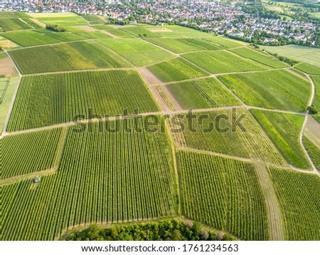 Aerial / Drone shot of vineyard and agricultural fields in Rheinhessen Germany close to Nieder-Olm