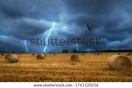 Bales of hay on the field during a lightning storm. Force of nature landscape. Agricultural field with straw bales and lightning bolts. Countrylife.