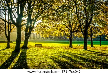 Autumn park trees sunlight shadows landscape. Autumn park trees sunlight shadows. Sunlight shadows in autumn park #1761766049