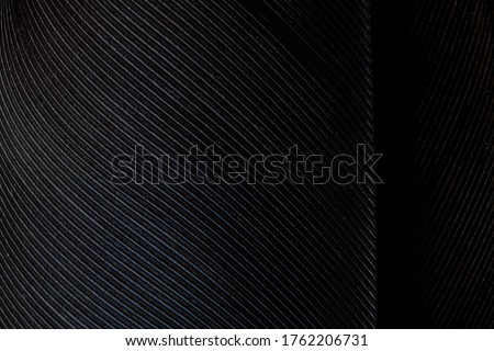 Black macro feather,Black raven feathers ,Serbia, Feather, Macrophotography, Black Color, Gray Color,Raven feather in macro view ,Feather, Germany, Backgrounds, Bird, Black Color,Abstract, Art, #1762206731