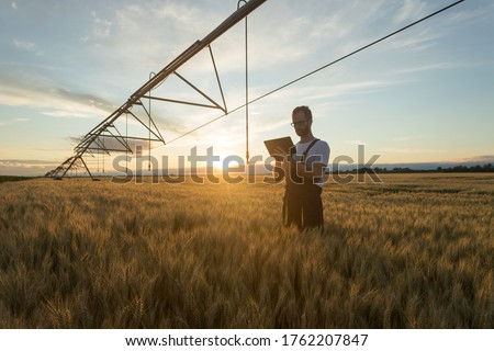 Serious young Caucasian farmer or agronomist standing in ripe wheat field beneath center pivot irrigation system and using a tablet at sunset #1762207847