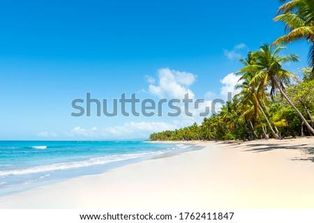 Tropical beach amazing view. Clear white sand beach in summer day. Waves of blue sea break on sunny beach. Cuba palms beach landscape background. #1762411847