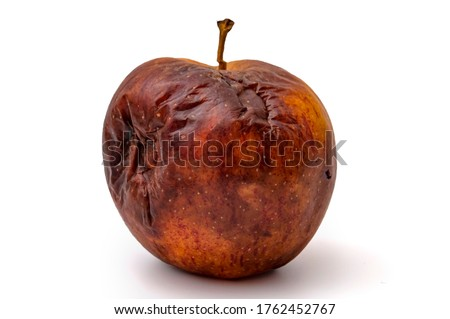 Rotting apples, decay and food waste concept with photograph of unhealthy decayed bad apple isolated on white background with clipping path cutout Royalty-Free Stock Photo #1762452767