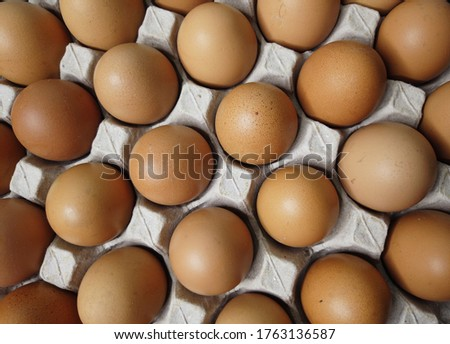Flat lay Close-up view of raw chicken eggs in egg paper box.Overhead view of brown chicken eggs in an open egg carton.Fresh chicken eggs background. Top view Natural organic egg. healthy real food. #1763136587