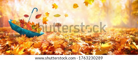 Beautiful autumn background landscape. Carpet of fallen orange autumn leaves in park and blue umbrella. Leaves fly in wind in sunlight. Concept of Golden autumn. #1763230289
