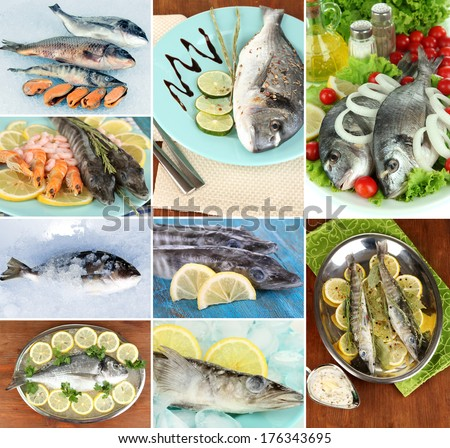 Fresh fish and fish dishes collage #176343695