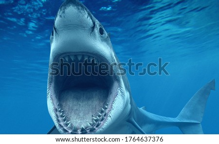 Attack By The Shark In Water Royalty-Free Stock Photo #1764637376