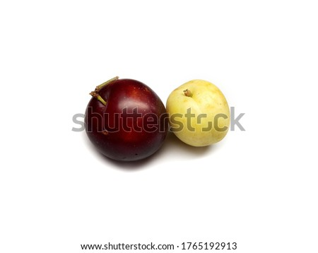 Apricot and Plum Isolated on White Background #1765192913