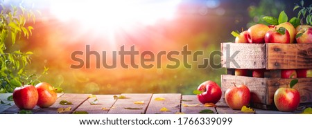 Apples In Wooden Crate On Table At Sunset - Autumn And Harvest Concept #1766339099