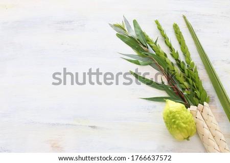 Jewish festival of Sukkot. Traditional symbols (The four species): Etrog (citron), lulav (palm branch), hadas (myrtle), arava (willow) Royalty-Free Stock Photo #1766637572