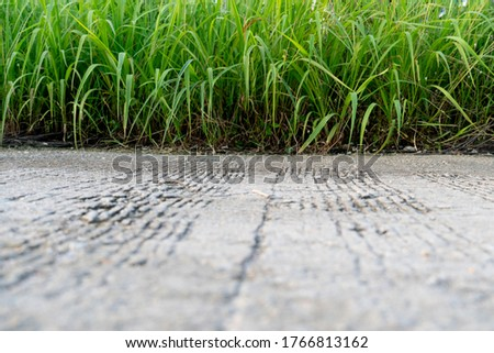 Close up on concrete in the middle of the road and have a beautiful background of green grass. Beside view. #1766813162