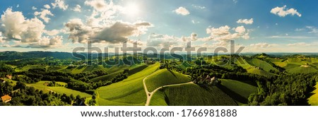 Vineyards panorama Leibnitz area famous destination wine street area south Styria on border with Slovenia. Wine country in summer. Tourist destination. Green hills and crops #1766981888