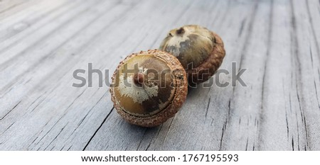 Close picture of acorns on a wood table