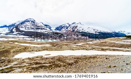 The Snow Dome and Mount Kitchener at the Columbia Icefields in Jasper National Park, Alberta, Canada at the end of May #1769401916