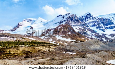 Mount Andromeda, Mount Athabasca, Hilda Peak and Boundery Peak south of the Athabasca Glacier in the Columbia Icefields in Jasper National Park, Alberta, Canada at the end of May #1769401919