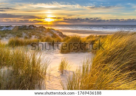 View from dune top over sunset in North Sea from the island of Ameland, Friesland, Netherlands Royalty-Free Stock Photo #1769436188