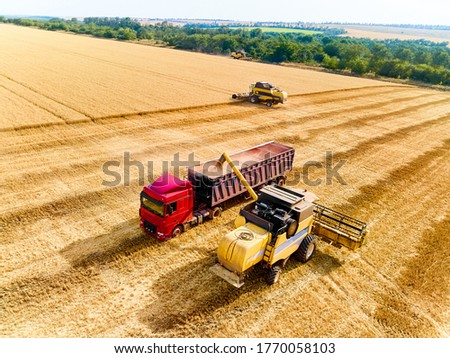 Aerial drone view. Overloading grain from combine harvesters into grain truck in field. Harvester unloder pouring harvested wheat into a box body. Farmers at work. Agriculture harvesting season. #1770058103