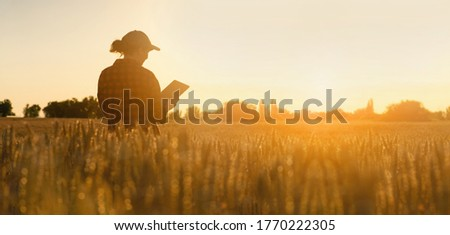Woman farmer stands in a wheat field at sunset and works with a digital tablet. Smart farming and precision agriculture #1770222305
