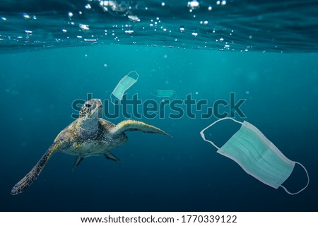 A sea turtle going to eat a surgical mask. Photo manipulation about ocean pollution and the consequences of overuse of surgical masks during coronavirus pandemic. #1770339122