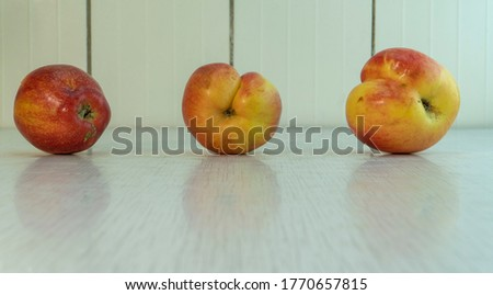 Three misshapen apples red and yellow colour reflect in rustic table. Homegrown fruits is best for diet because it contain many vitamins and microelements. Landscape picture with copy space.