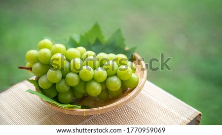 Green grape in Bamboo basket on wooden table in garden, Shine Muscat Grape with leaves in blur background Royalty-Free Stock Photo #1770959069