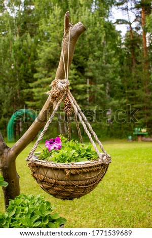 Hand made flower pot hanging on a snag on the lawn in the garden. Green grass #1771539689
