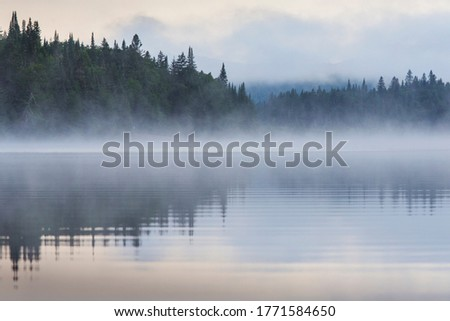 Summer morning in Mont-Tremblant national park #1771584650