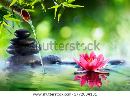 Spa Stones And Waterlily With Fountain In Zen Garden