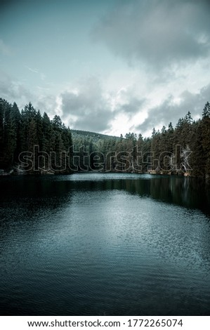 Dark and moody mountain landscape in winter with fog in the trees. Moody nature vibes with mist and dark cold weather. Harz Mountains, Harz National Park in Germany. #1772265074