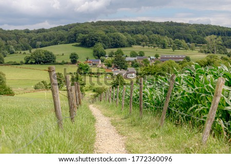 Summer landscape of hilly countryside of South Limburg (Zuid-Limburg) with small villages between the hill, Epen is a village in the southern part of the Dutch province of Limburg, Netherlands. #1772360096