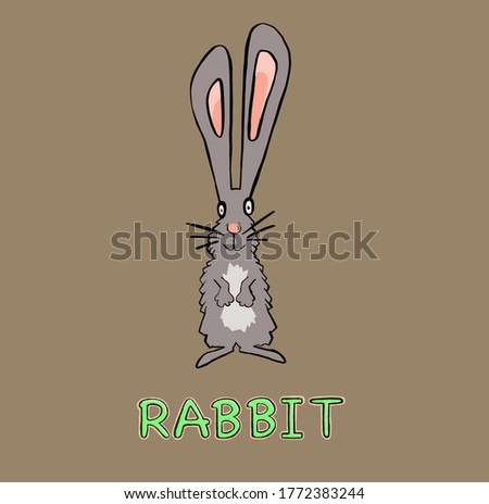 cute rabbit animal in frame circular illustration