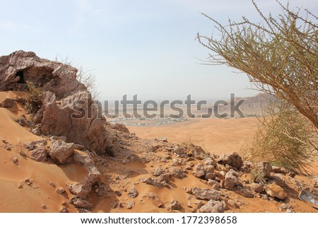 Desert terrain in Sharjah, United Arab Emirates. Wind action constantly changes the dimensions, color and texture of the inhospitable and arid terrain where summer temperatures peak above 122F/50C. Royalty-Free Stock Photo #1772398658