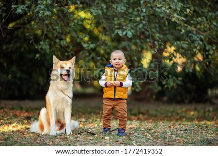 a cute little boy in brown trousers and a yellow vest stands next to a red dog Akita inu in an autumn Park #1772419352