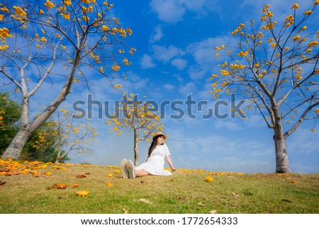 Asian girls are smiling brightly, sitting and throwing yellow flowers in the autumn foliage in the park and relaxing. Lifestyle concept