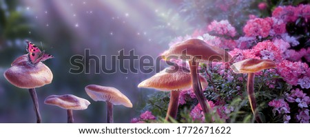 Magical fantasy mushrooms in enchanted fairy tale dreamy elf forest with fabulous fairytale blooming pink rose flower and butterfly on mysterious background, shiny glowing stars and moon rays in night #1772671622