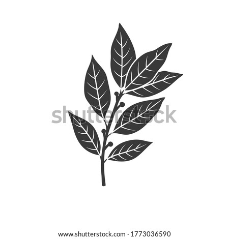 Bay leaf glyph icon. Culinary herbs and spice. Monochrome condiment vector illustration. Royalty-Free Stock Photo #1773036590