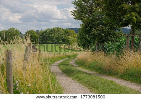 Summer landscape of hilly countryside of South Limburg (Zuid-Limburg) with small gravel footpath between the farm, Epen is a village in the southern part of the Dutch province of Limburg, Netherlands. Royalty-Free Stock Photo #1773081500