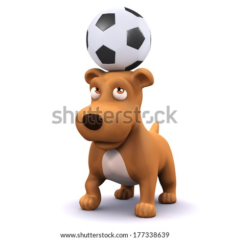 3d Dog balances football on head