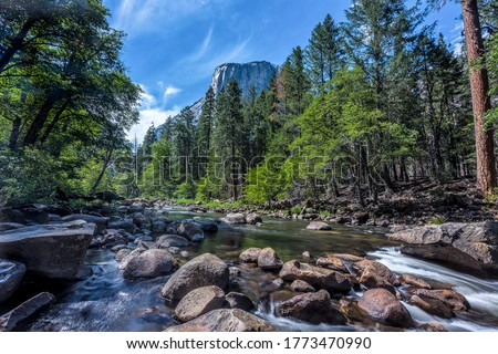 Mountain forest river rocks landscape. Forest river in mountains. River rocks water flow Royalty-Free Stock Photo #1773470990