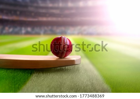 cricket leather ball resting on bat on the stadium pitch #1773488369