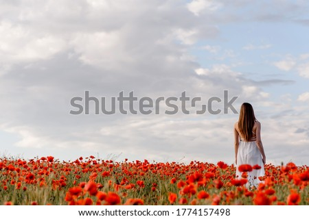 Behind view of a woman in white dress walking in a red poppies field. Back picture of a woman in glade of poppies. Copy space for you text