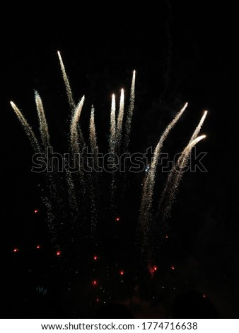 This is the picture of fireworks. The fireworks used at festivals and joyful occasions. It brings joy and colour in the busy running life of most of the people.