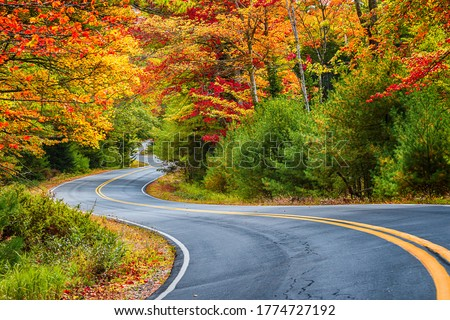 Winding road curves through scenic autumn foliage trees in New England. Royalty-Free Stock Photo #1774727192