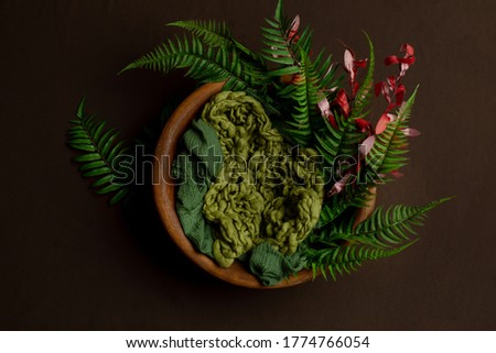 brown basket made of wood for a photo session of newborns. props for the photo shoot are decorated with fern leaves. background for a newbourn photo shoot #1774766054