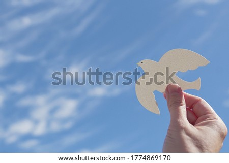 Hands holding white dove bird on blue cirrus cloud sky background, international day of peace, world peace day concept, csr responsible business, animal rights and hope concept Royalty-Free Stock Photo #1774869170