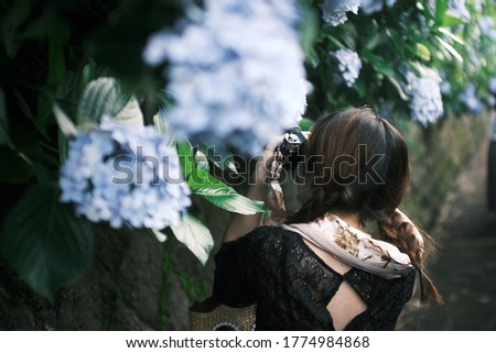 Asian woman taking a picture of hydrangea