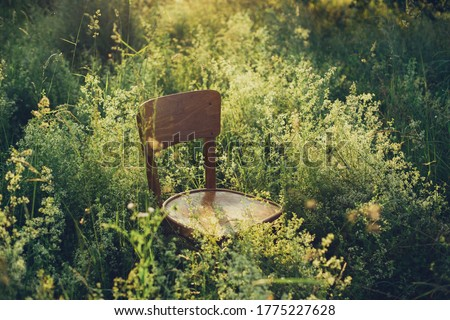 Rustic wooden chair among wildflowers and herbs in summer meadow in sunset light. Slow living, summer in countryside. Atmospheric tranquil moment Royalty-Free Stock Photo #1775227628