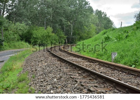 Railroad tracks and asphalt road turn between trees. Summer.