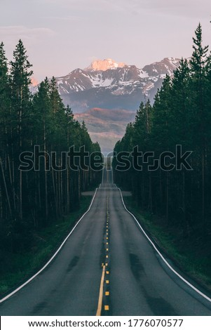 An open road leads to the Grand Teton's mountain range, rising in the distance beyond a thick pine forest. The last rays of sunlight shine on the mountain. Photo shot vertically to include more road.  Royalty-Free Stock Photo #1776070577